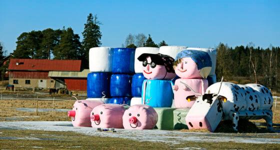 Suomi jää jälkeen