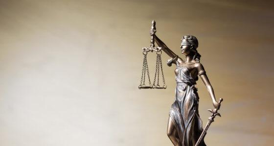 Perustuslakiraportti I: Lakien laki, kaikkien laki