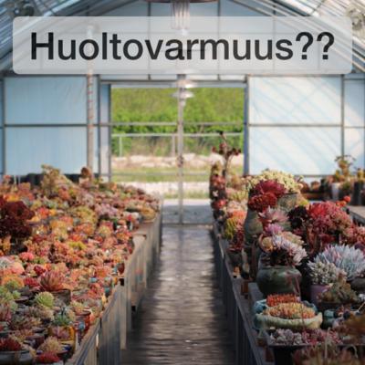 Elsi Kataisen ja Petri Sarvamaan aloite 141-tuen jatkamisesta on vahingollinen ilmastolle ja Suomen julkiselle taloudelle